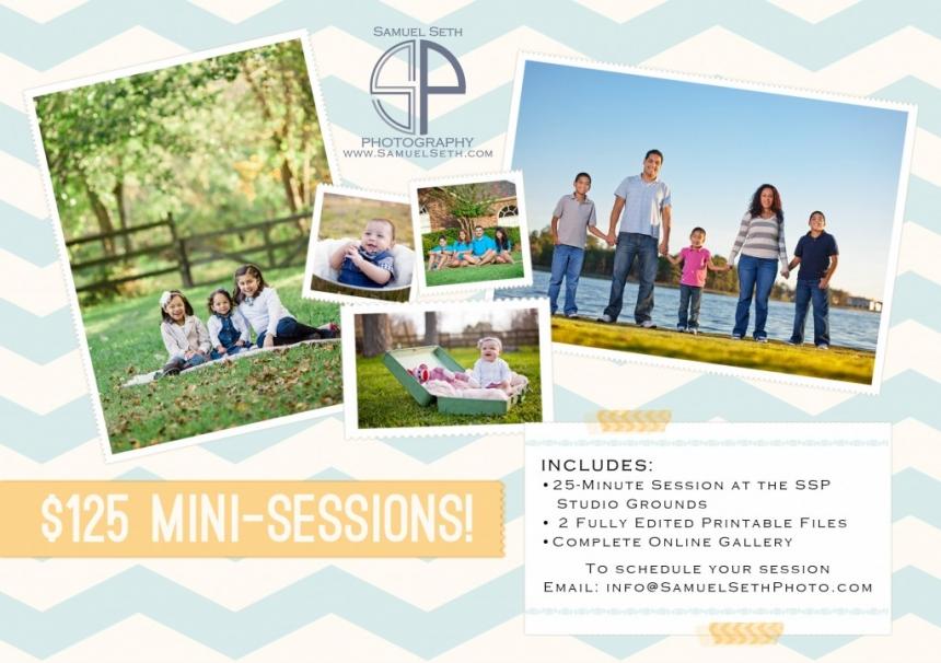 Mini-Session Flyer